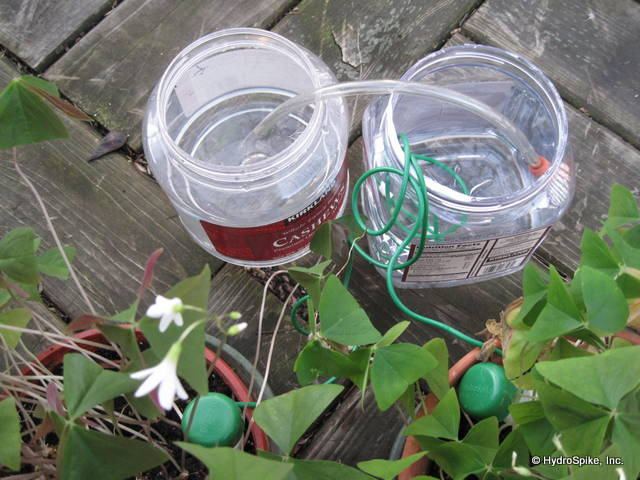 Siphon Water Containers