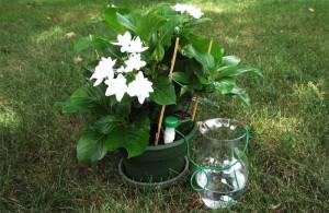 hydrospike-happy-plants
